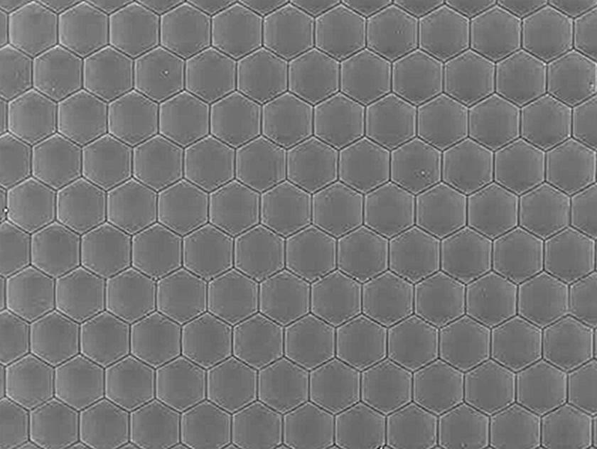 マイクロレンズアレイ(5〜150μm)